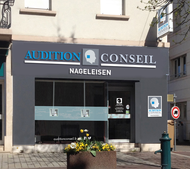 Audition Conseil Saint-Louis