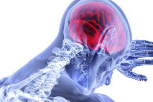 Entendre est un phénomène sensoriel et moteur qui agit sur différents cortex cérébraux