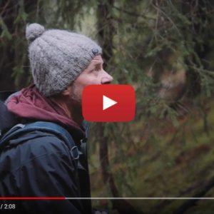 """Vidéo """" La nature, source d'inspiration"""" de la marque Bernafon"""
