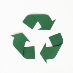 AUDITION CONSEIL protège les forêts et l'environnement
